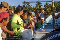 04-02-2020 - Puerto Escondido beach, Oaxaca, Mexico, customers arriving at dawn to buy fresly caught fish from the crews of small fishing boats. © Jim West