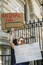 25-05-2020 - Coronavirus Pandemic, Dominic Cummings breaking of lockdown rules, woman with Animal Farm quote: All Animals Are Equal But Some Are More Equal Than Others, Downing Street, Westminster, London © Jess Hurd