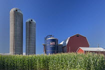 28-07-2020 - Shelbyville, Michigan, Crops and grain silos on a farm © Jim West