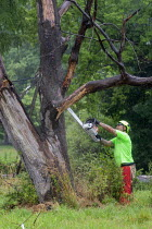 16-07-2020 - Flint, Michigan, USA, Flint Grounds Crew clearing growth from vacant lots with long abandoned houses nearly overgrown by trees and bushes © Jim West