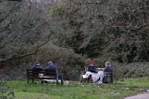 20-12-2020 - London Tier 4 Restrictions. Socialising outdoors, Putney Common, London © Duncan Phillips