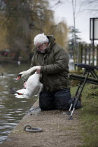 04-03-2021 - Angler trying to free a swan entangled in his fishing line, River Avon, Stratford upon Avon, Warwickshire. The distressed fisherman managed to free the bird which got caught in the hook and line and h... © John Harris
